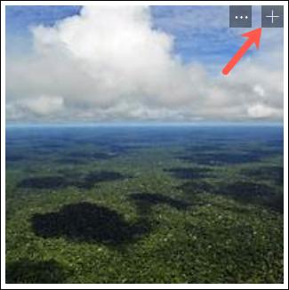Haga clic en el signo más para agregar una imagen