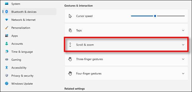 """Haga clic en la sección """"Desplazamiento y zoom"""" para expandirla."""